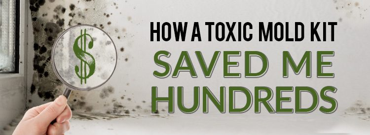 How a diy toxic mold test kit saved me hundreds of dollars solutioingenieria Image collections