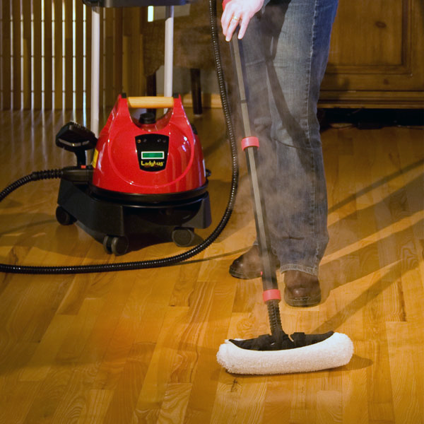 101 Uses For The Ladybug Tekno 2350 Steam Cleaner