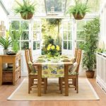 Household plants improve indoor air quality