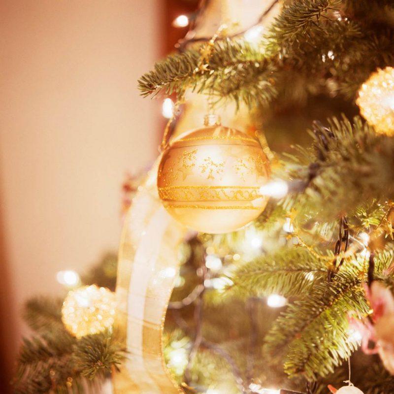 Christmas Tree Done: Do Christmas Trees Cause Allergies?