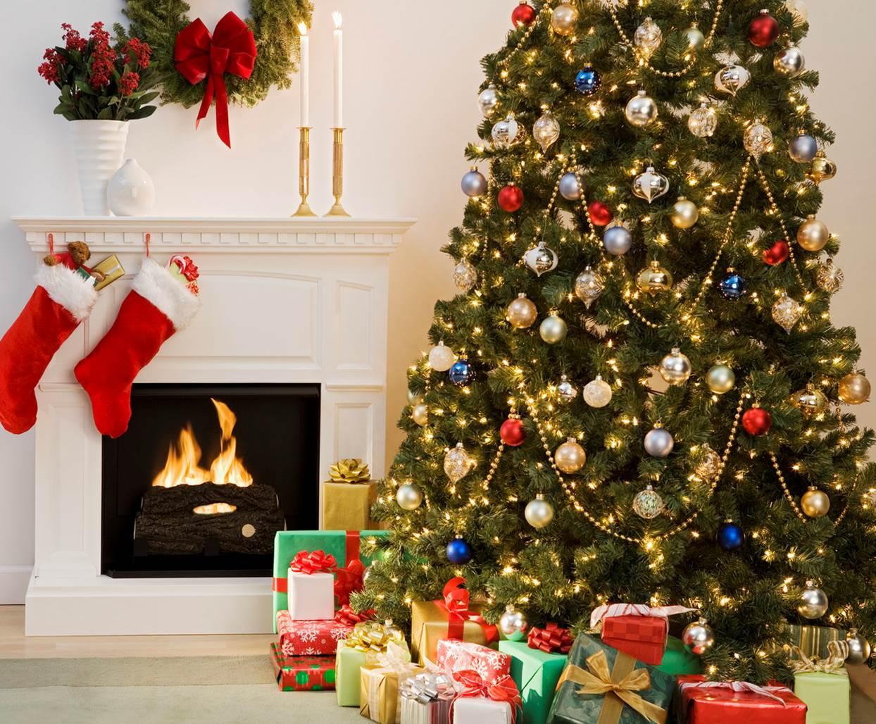 Do Christmas Trees Cause Allergies? | Sylvane