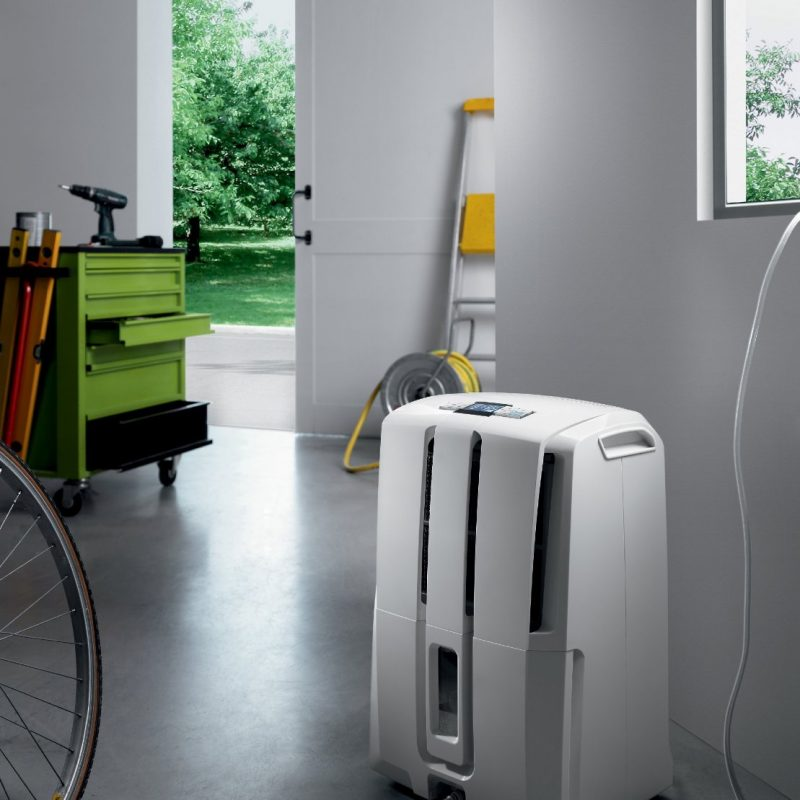 Why Is Dehumidification Important: Why Is Year-Round Humidity Important?