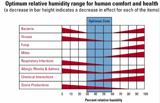 Why Is Year Round Humidity Important