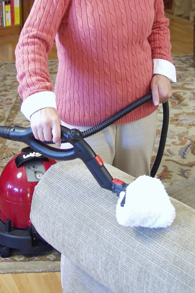 What NOT to Clean with Steam Cleaners | Sylvane