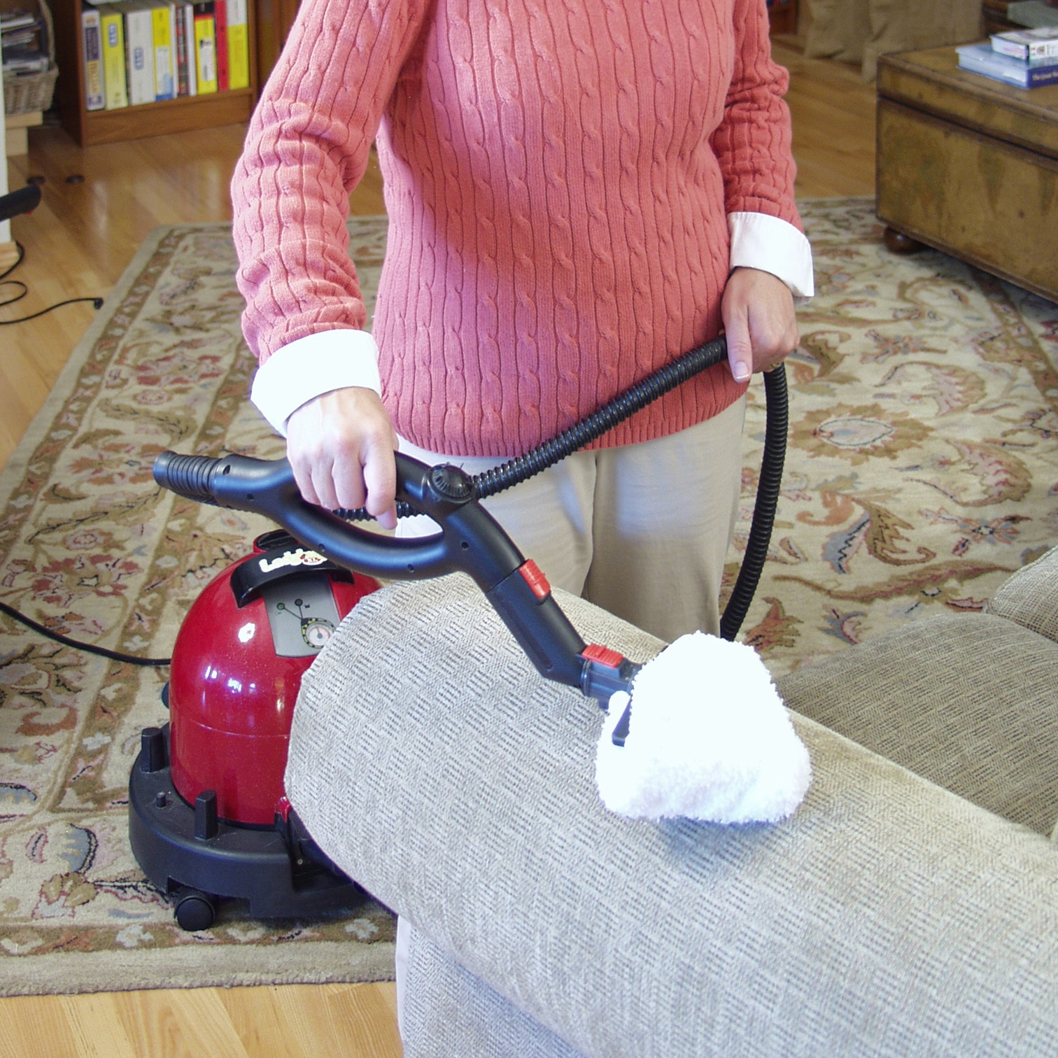 How Do Steam Cleaners Work