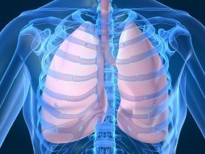 Lung Cancer Awareness Month: Environmental Conditions and